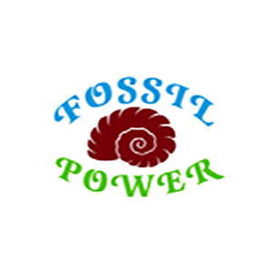 Fossil Power